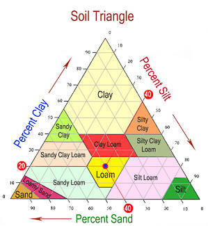 Soils composition ornamental plant care from for Different types of soil and their characteristics