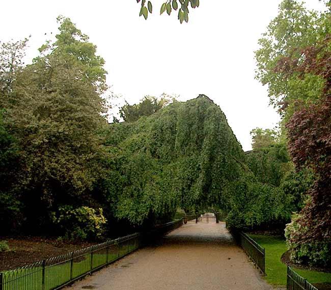 Kensington Park Gardens England Gardens Parks