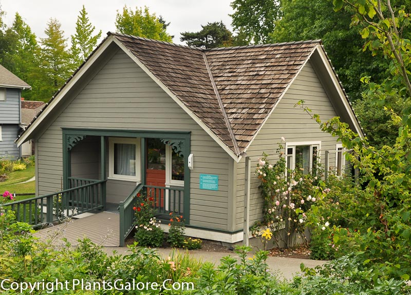 bellevue botanical garden usa gardens parks squares and open spaces presented by plantsgalorecom