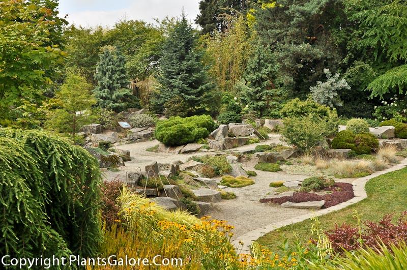 Bellevue botanical garden society garden ftempo for Bellevue botanical garden lights