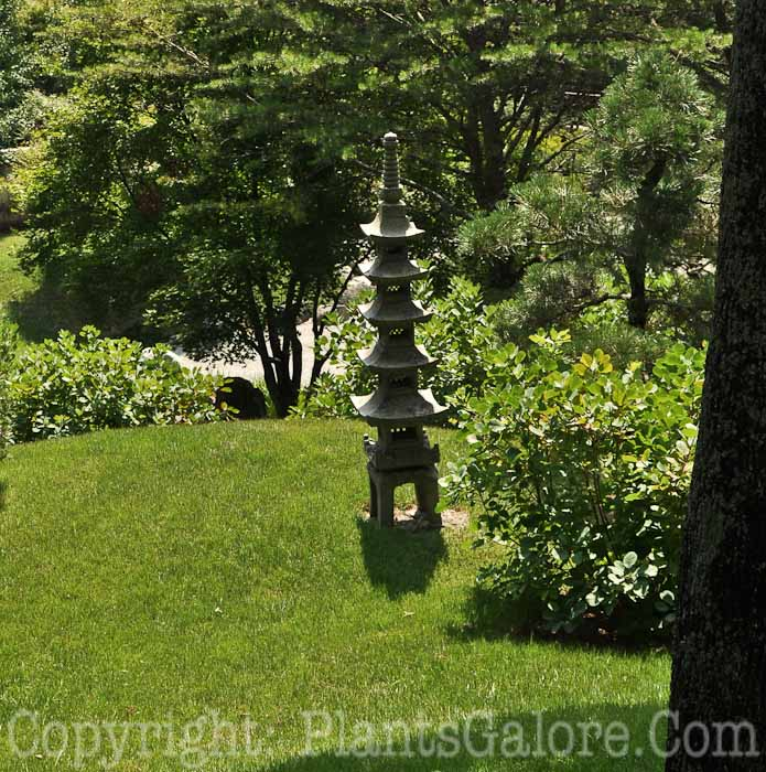 Cheekwood Botanical Garden Tennessee Usa Gardens Parks Squares And Open Spaces