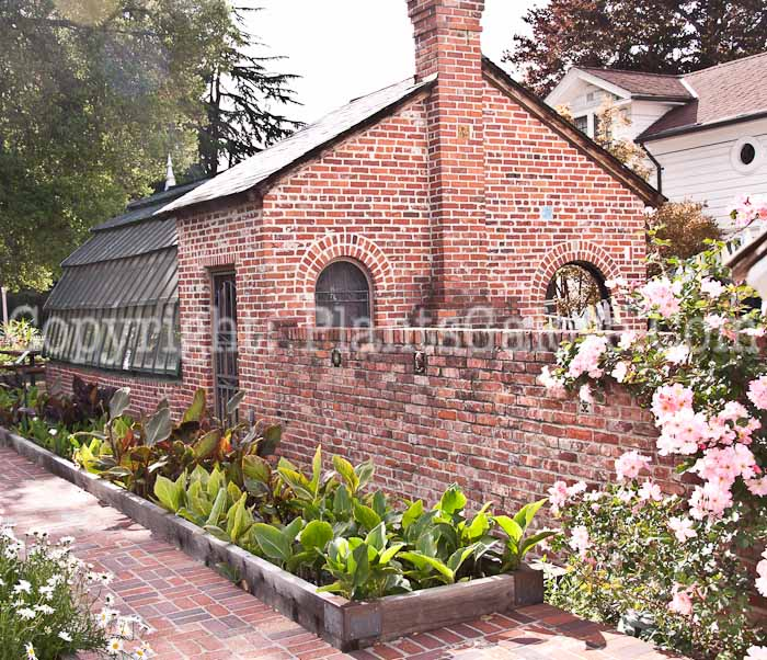 Luther burbank house and garden usa gardens parks squares and open spaces presented by for Luther burbank home and gardens