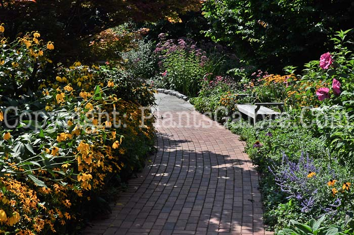 Michigan State University Radiology Lab Garden Usa