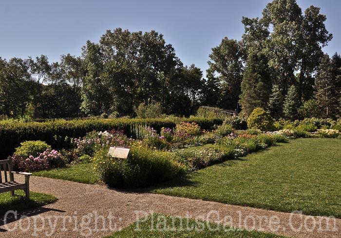 Matthaei Botanical Gardens 1800 N. Dixboro Rd. Ann Arbor, MI 48105