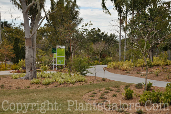 Naples Botanical Garden Usa Gardens Parks Squares