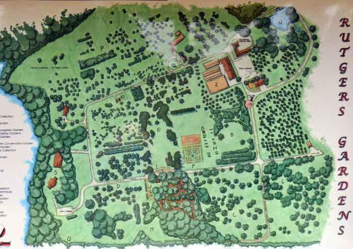 The Official Botanic Garden Of Rutgers: Rutgers University Gardens