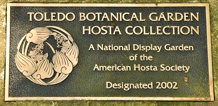 The Large Perennial Garden Includes A Nice Sized Shaded Area With Hostas  And Other Woodland Plants. Toledo Botanical Garden