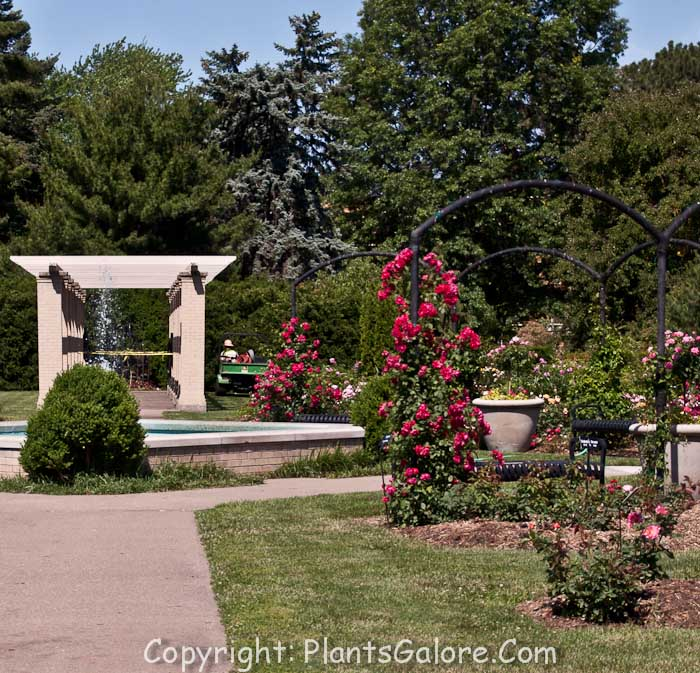 It Consists Of 33 Acres Of Gardens And Public Park Area. There Is A Nice  Rose Garden And A Hosta Display Garden. Vander Veer Botanical Park
