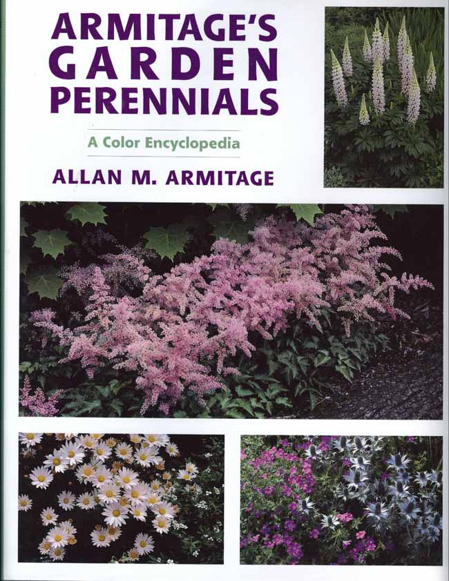 Dr armitage from the back of his book herbaceous perennial plants