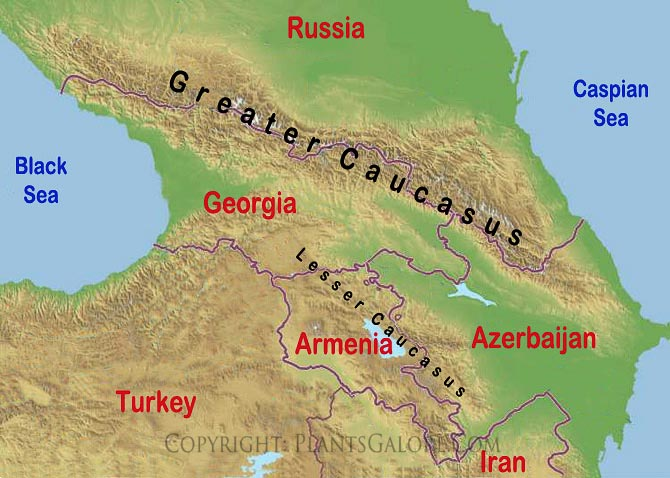 Caucasus Mountains On World Map Pictures to Pin on Pinterest PinsDaddy