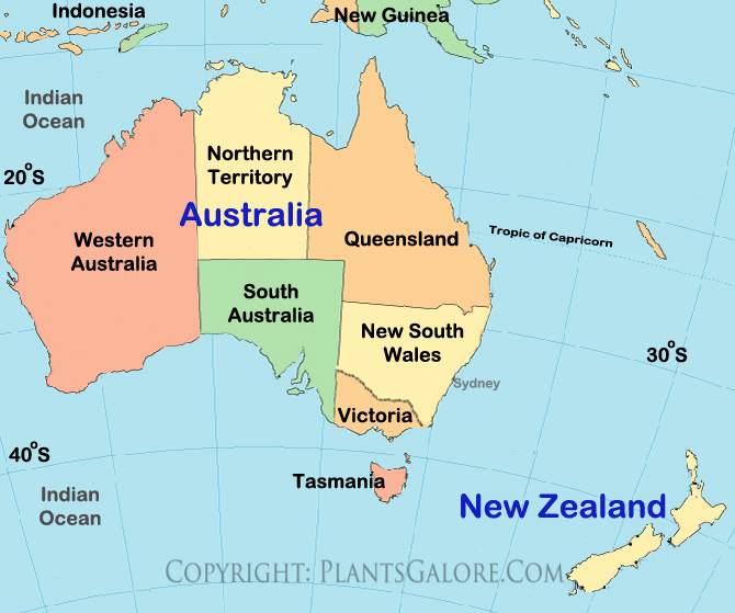 Types map of new zealand ornamental plant information from types map of new zealand ornamental plant information from plantsgalore sciox Images