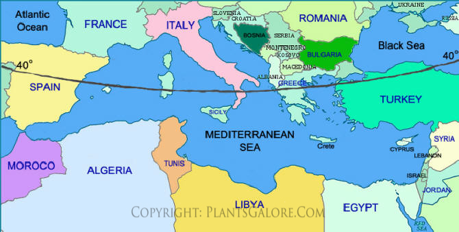 Types: Map of the Mediterranean Region- Ornamental Plant ...