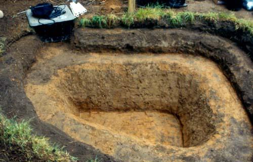 Digging The Backyard Pond Presented By Plantsgalore Com